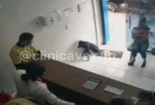 Photo of जख्मी कुत्ता इलाज कराने खुद पहुंचा क्लिनिक, डॉक्टरों ने किया ट्यूमर का खुलासा